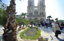 """Une """"vraie"""" oasis, avec des palmiers, de (petites) dunes de sable et un point d'eau, a été installée mercredi 4 mai sur le parvis de Notre-Dame de Paris à l'occasion de la manifestation """"La palme de la liberté"""" par l'Aide à l'Eglise en détresse (AED) pour défendre la liberté religieuse dans le monde."""