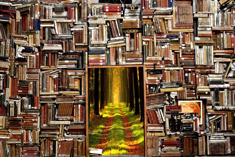 Mon choix de livres à offrir à Noël pour une culture profonde