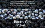 La perle du Royaume, Valérian, Hegel et les singes....