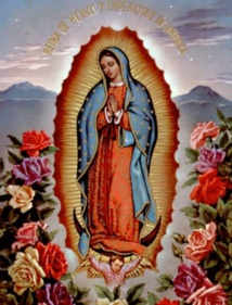Notre Dame de Guadalupe, Amérique du Sud