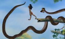 Queue de serpent  et humilité.