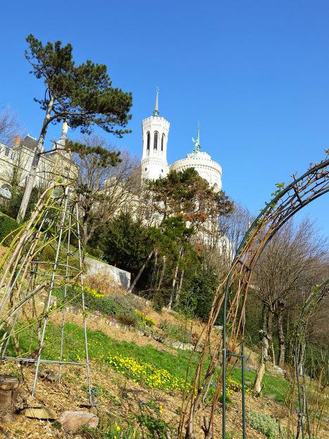 Jardins du Rosaire, Lyon