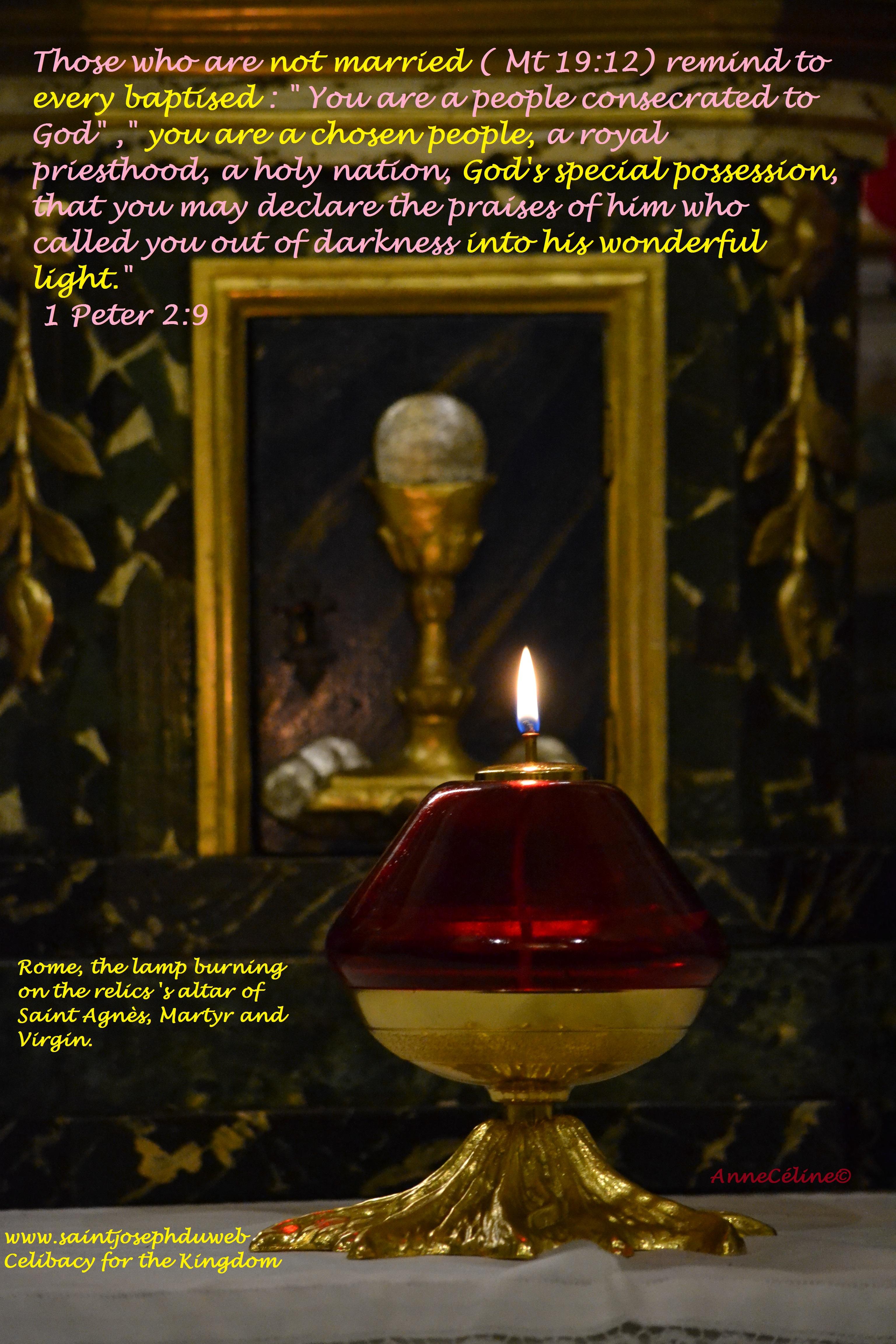 """Ceux qui ne se marrient pas ( Mt 19:12) rappellent à tous les baptisés : """" Tu es un Peuple choisi, un sacerdoce royal, une nation sainte, un peuple consacré au Seigneur afin de louer celui qui t'a appelé des ténèbres à son admirable lumière. 1 Pierre 2:9"""